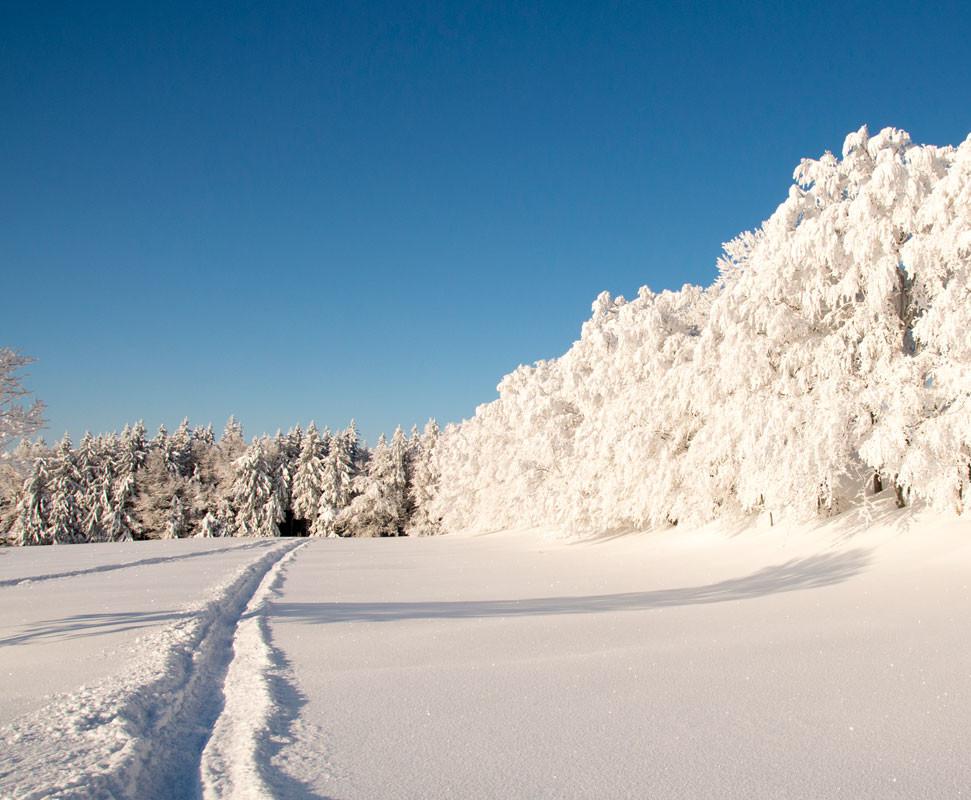 Weissenstein im Winter